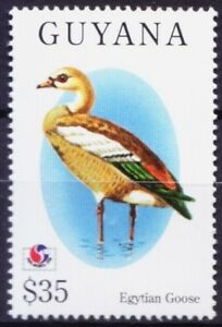 Guyana-1994-MNH-Philakorea-Egyptian-Goose-Water-Birds-Y59