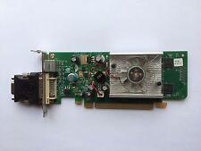 SFF ASUS CARDINAL GEFORCE 8400GS 256MB PCIE DVI TV G86_P413/BPC WITH VGA ADAPTER