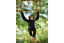 Climbing-Monkey-Garden-ornament-Monkey-hanging-tree-statue thumbnail 1