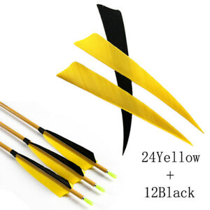 """Arrows & Parts Impartial 12pcs Black+24pcs Color 5"""" Arrow Turkey Feather Shield Shape Hunting Archery As Effectively As A Fairy Does Outdoor Sports"""