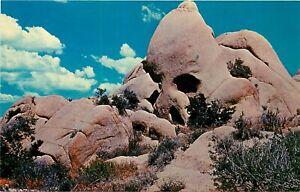 Chrome-Postcard-CA-J087-The-Skull-Joshua-Tree-National-Monument-Rock-Formation