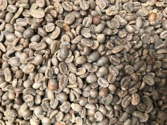 Green Unroasted Panama Boquete Whole Bean Coffee 5 Pound Bag For