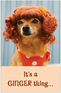 REDHEAD-GINGER-It-039-s-a-Ginger-Thing-Poster-by-Giggles-by-Gigi-11x17-Dog-Poster