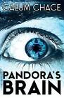 Pandora's Brain by Calum Chace (Paperback, 2015)