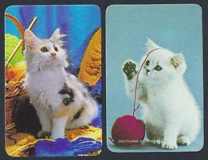 915-286-Blank-Back-Swap-Card-MINT-pair-Kittens-with-wool