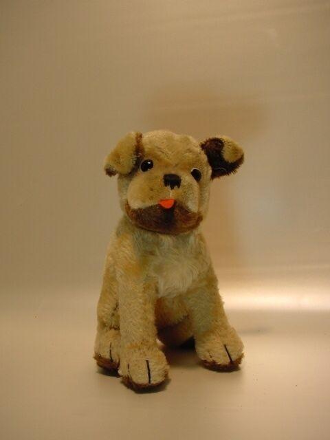 B462  Hund ALT | Verwendet Verwendet Verwendet in der Haltbarkeit  f6dd45