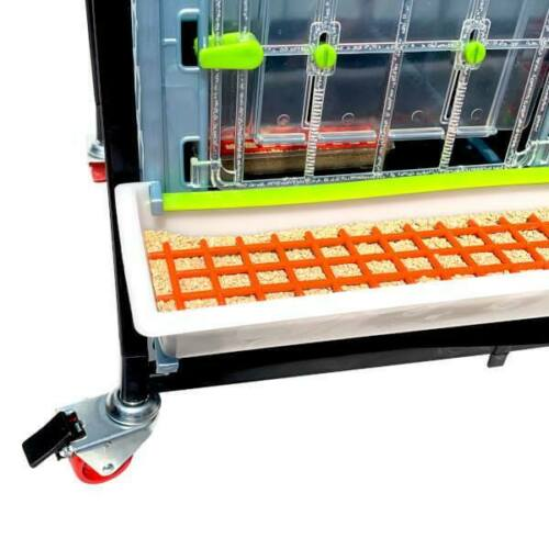 """1 Layer Hygienic Breeding Pen, Durable, Easy to Clean Chick Brooder H: 15/"""""""