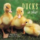 Ducks at Play by Sophie Bevan (Paperback, 2005)