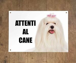 MALTESE-attenti-al-cane-mod-3-TARGA-cartello-CANE-IN-METALLO