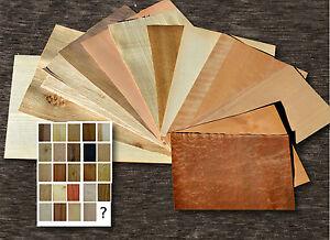 11er-Holz-Furnier-Set-Eiche-Nussbaum-Buche-Modellbau-Intarsie-Wood-veneer-oak