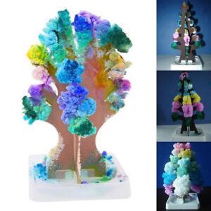 Magic-Growing-Tree-Toy-Boys-Girls-Novelty-Xmas-Gift-Christmas-Stocking-Filler-U