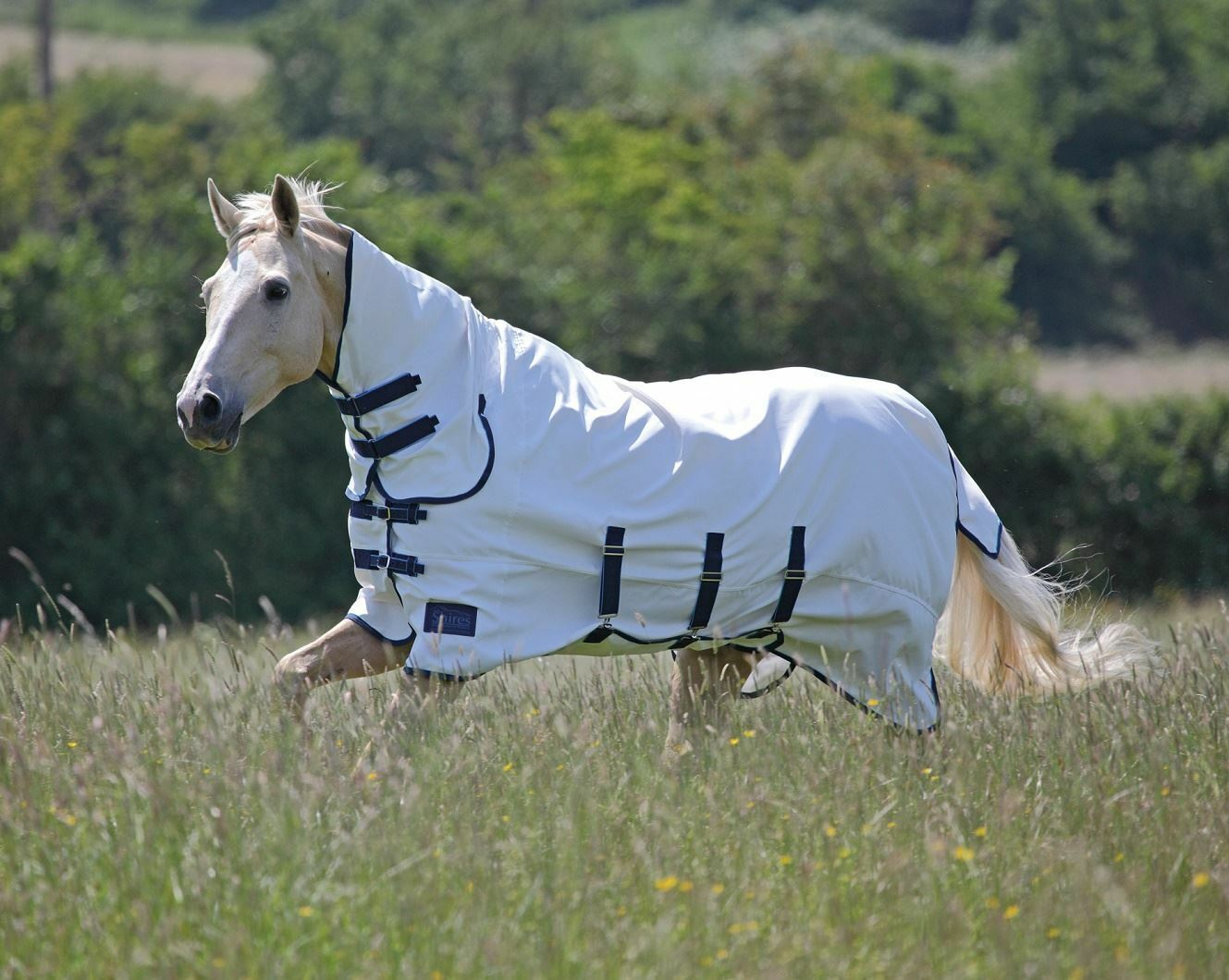 Shires Tempest Sweet Itch Combo Fly Rug with with Rug Belly Wrap (4'9 - 7'0) f1b731