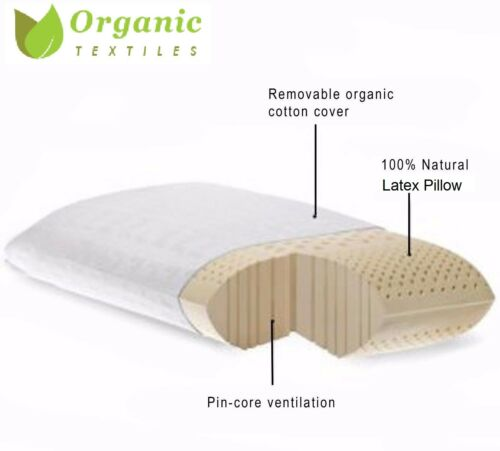 Organic Textiles|Natural Talalay Latex Pillow with Organic Cotton CoverQUEEN