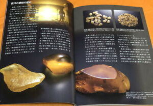 Amber - Fossilized tree resin book from Japan Japanese #1152