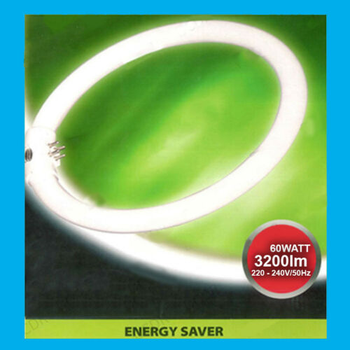 1x 60 W G10Q 4 broches T9 Rond 400 mm Circulaire Lampe Tube Fluorescent Ring Light Ampoule