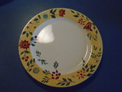 Pfaltzgraff Morning Glory Dinner Plates