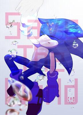 SONIC THE HEDGEHOG Doujinshi Avatar Kakudaikyo A5 20pages Sonic