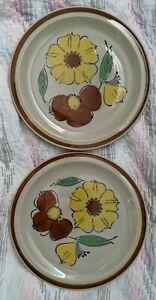 Set 2 Vintage Topaz Bouquet Made In Japan Hand Painted Stoneware Dinner Plates