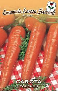 3500 Semi//Seeds CAROTA Mezza Lunga Nanstese 2