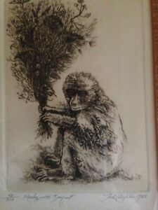 Josh-Coughlin-034-Monkey-with-Bouquet-034-1968-limited-edition-48-210-lithograph
