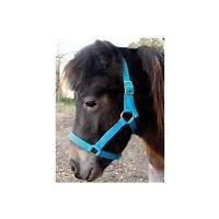 Miniature Horse Halter - 7 Colors - Premium Quality - 2 Ply 3/4 Nylon Web