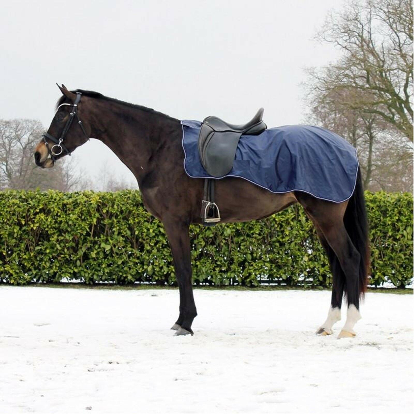 Horse Waterproof Equestrian Exercise Sheet Ride On Rug Fleece Lined Navy Large