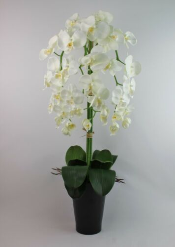 HANDMADE ARTIFICIAL SILK IVORY ORCHID 3 STEMS 80CM IN BLACK PLANT POT VASE