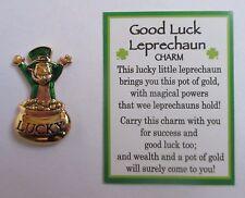 x Good Luck Leprechaun Ganz Lucky pot of Gold Pocket Token Charm wealth success