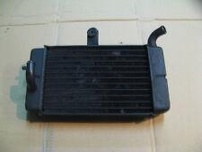 Radiateur d'eau gauche pour Honda 750 Africa twin - XRV - RD04