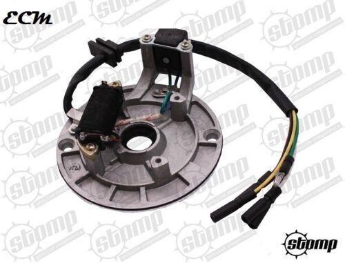 Stomp Pit Bike Stator Plate Generator Magneto 110 120 125 140 1 Coil Demon X