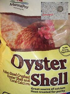 2 lb Oyster Shell Grit for Laying Hens crushed Calcium Chicken Feed scratch Eggs