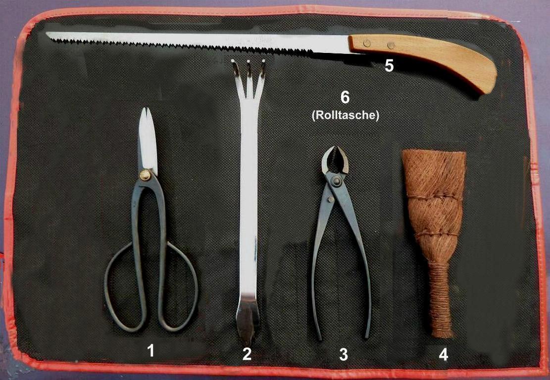 BONSAI Werkzeugset A Japanqualitaet 6 pz. strumento Set 6 pezzi in Giapponese