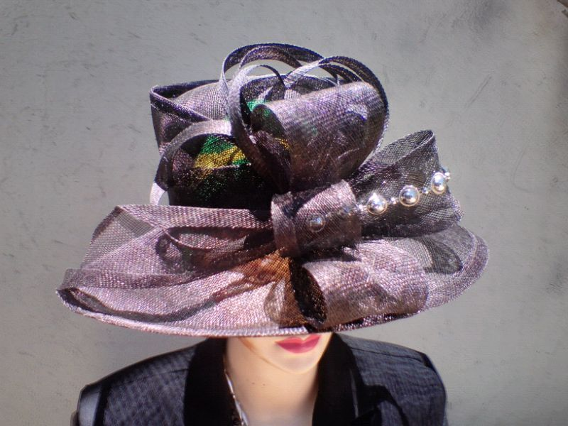 8dfbbaaa2de Buy your own hat or Start your own business with Sinamay and Crin Hatm