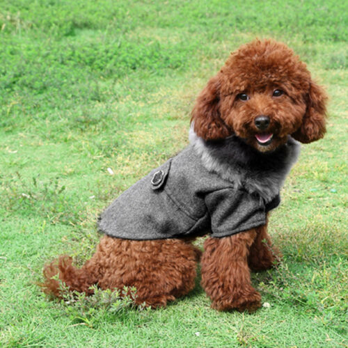 Winter Warm Dog Clothes for Small to Large Dog Fur Collar Pet Chihuahua Clothing