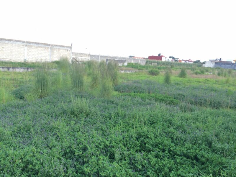 Terreno con construcción en venta cerca Los Castaños