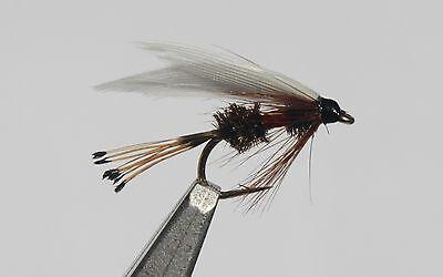 Royal Coachman Assortment; 1 Dozen Trout Fishing Flies