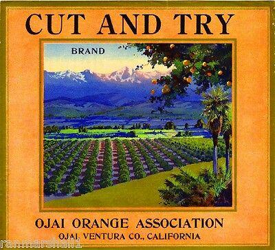 Ojai Ventura County Cut and Try Orange Citrus Fruit Crate Label Art Print