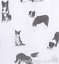 Ladies-BORDER-COLLIE-SHEEPDOG-cotton-mix-Scarf-Sarong-Sheep-dog-lover-gift thumbnail 9