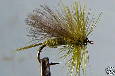 10 x Mouche de Peche Sèche Quill olive  H14//16//18 dry fly