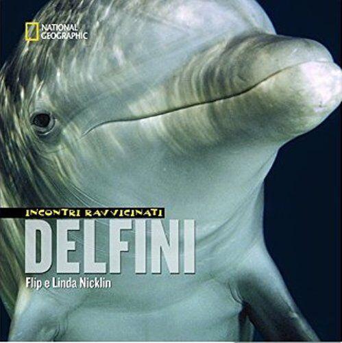 sito di incontri di delfini