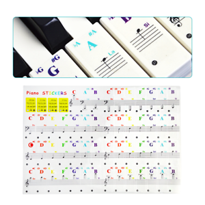 Colorful-Keyboard-Piano-Stickers-for-37-49-61-88-Key-Transparent-and-Removable