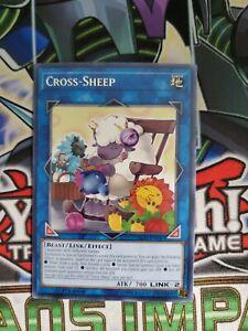 Cross-Sheep IGAS-EN047 Rare 1st NM Yugioh