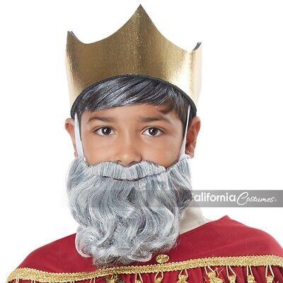 California Costumes Wise Man Beard Mustache Brown Adult Halloween Costume 70920