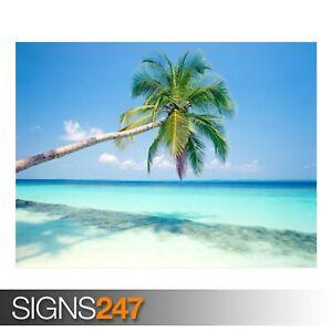 TROPICAL-ISLAND-3311-Beach-Poster-Picture-Poster-Print-Art-A0-A1-A2-A3-A4