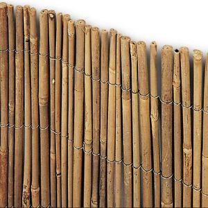 Tenda ARELLA TIME Canne Bamboo 100 X 300 CM COPERTURA RECINZIONE 1 X ...