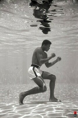 Muhammad Ali Training in a Pool Boxing Player 30 24x36 Art Poster 3629