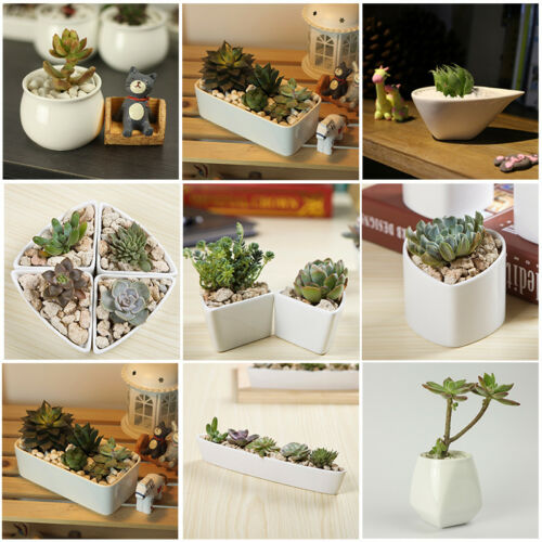 1 Pcs Ceramic Vase Antique Crafts Romance Living Room Floral Home Decoration