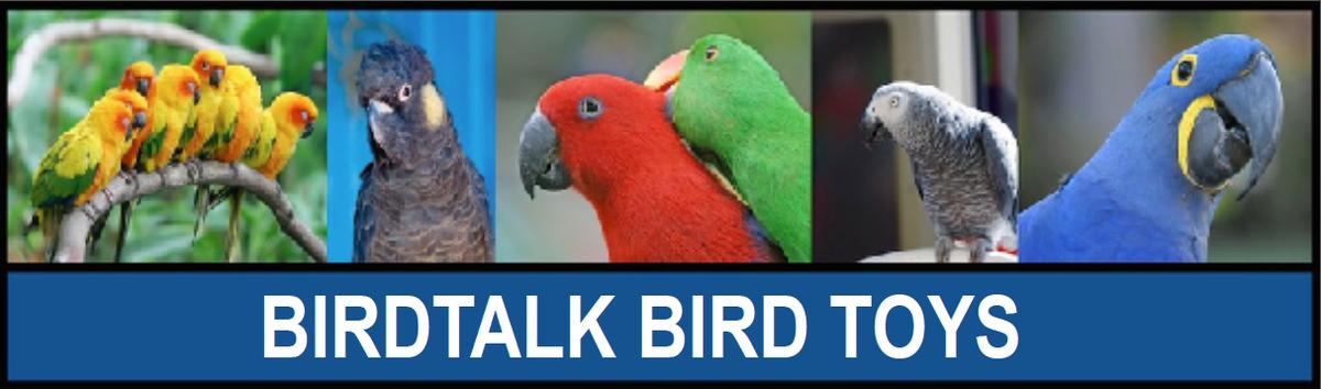 letstalkbirds
