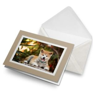 Greetings-Card-Biege-Japanese-Akita-Inu-Puppy-Dog-15710