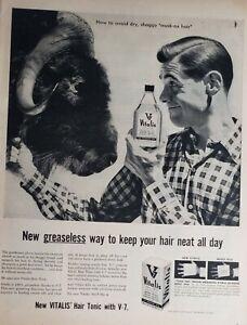 vitalis hair tonic vintage lot 3 vintage vitalis hair tonic print ads floor mop musk